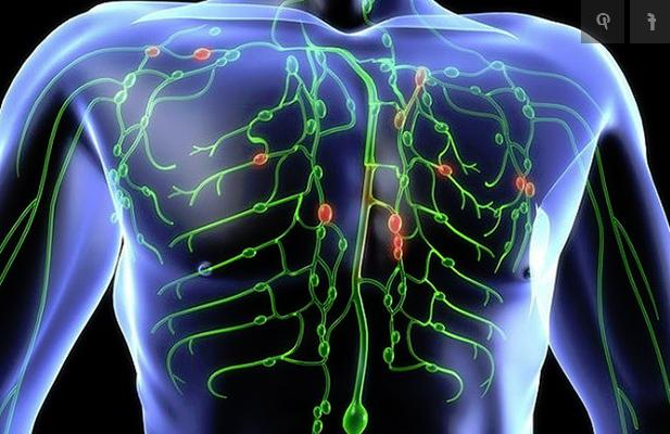 mi és a férgek pinworms magas onkogén kockázatú emberi papillómák