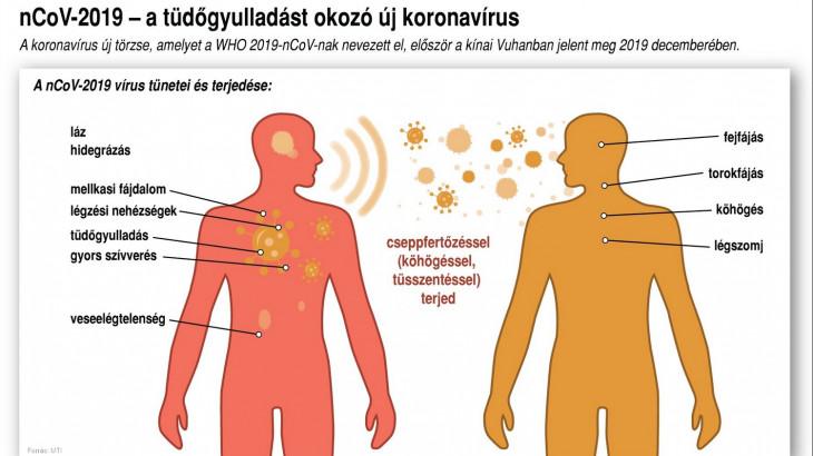 a fertőzés útja luminalis mellrák b