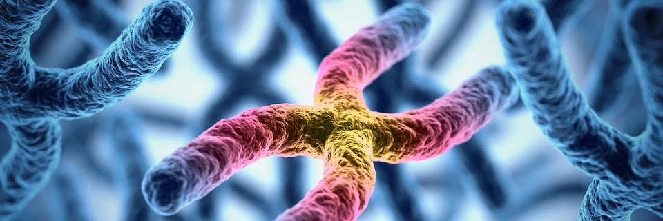 neuroendokrin rák örökletes