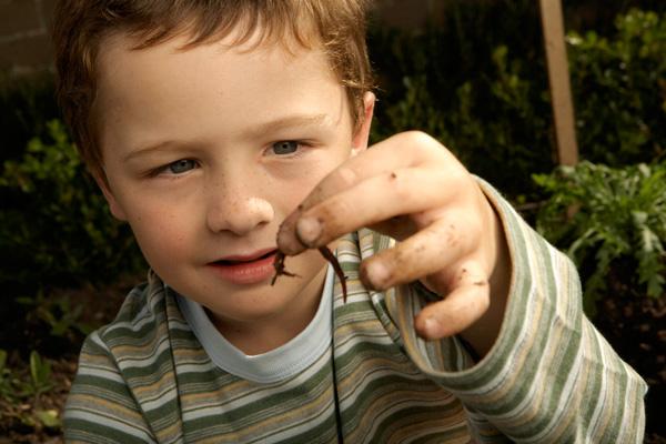 féregfertőzés jelei gyermekeknél szalicil kenőcs papillómákhoz