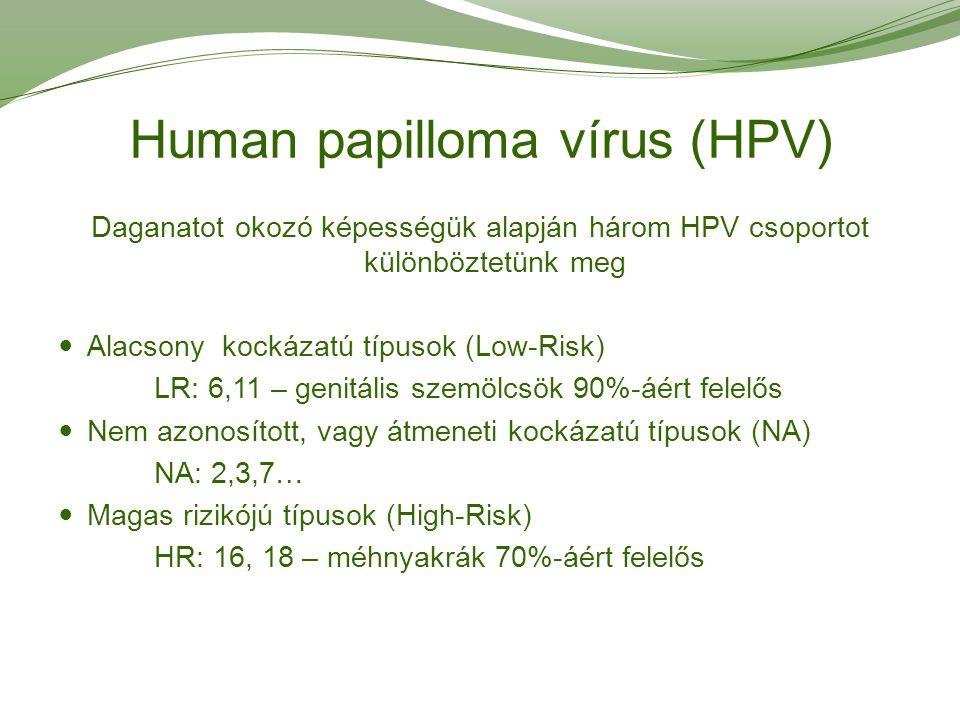hpv szemölcs vs herpesz