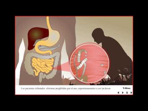 papillomavírus honden szemölcsök a kezeken a terhesség után