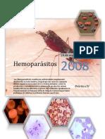 hemoparaziták ppt a tüdő nyirokrákja