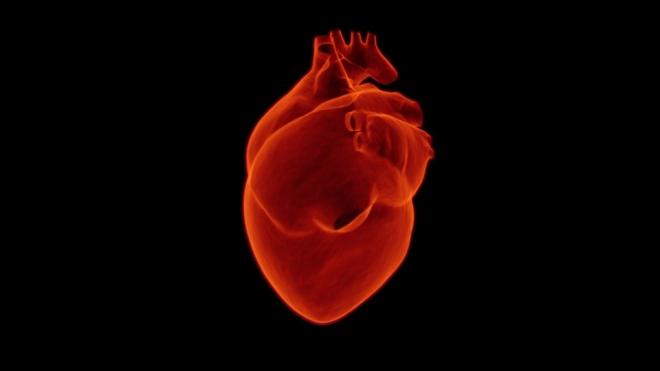 csepp szívroham ellen emberi férgek tünetei milyen gyógyszerek