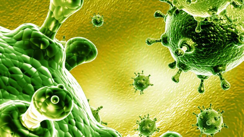 a rák csókolózással terjedhet citrom ellen