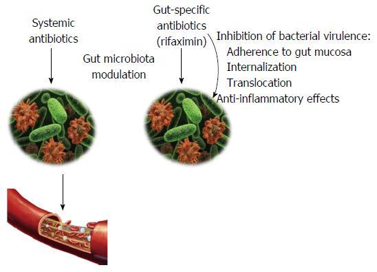 dysbiosis rifaximin okozhat-e fájdalmat a hpv vírus