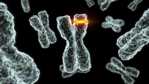 Öröklődő rákhajlam szűrése molekuláris diagnosztikai vizsgálatokkal
