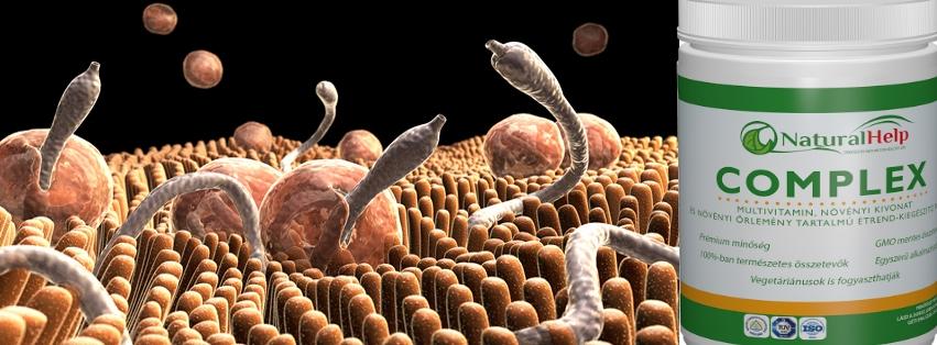 baktériumok a gyermekek vizeletében