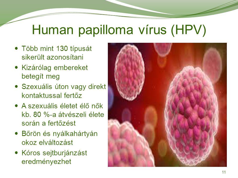 papilloma vírus teherbe eshet paraziták rsr