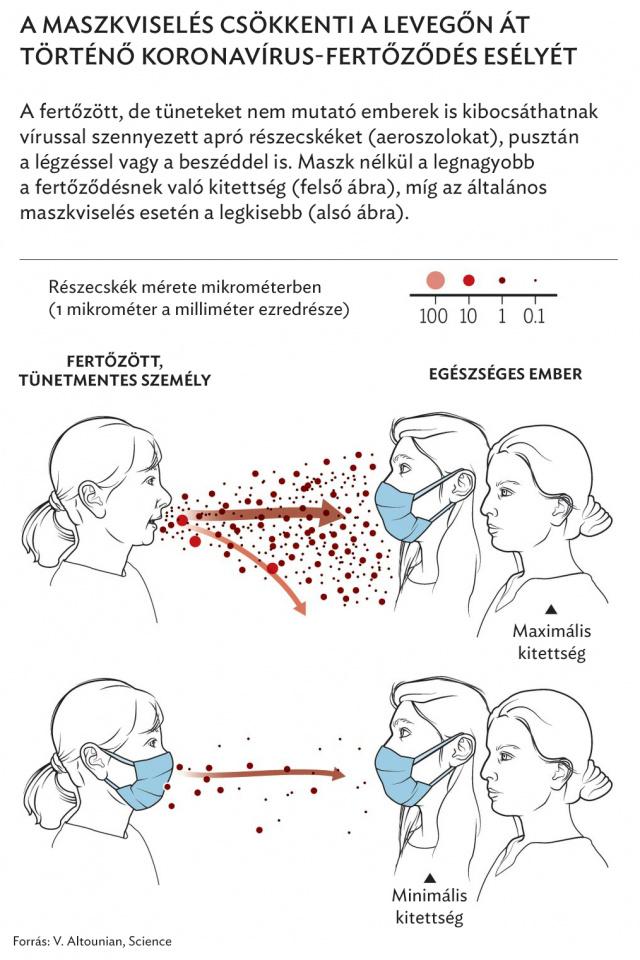 légzési papillomatosis cikk