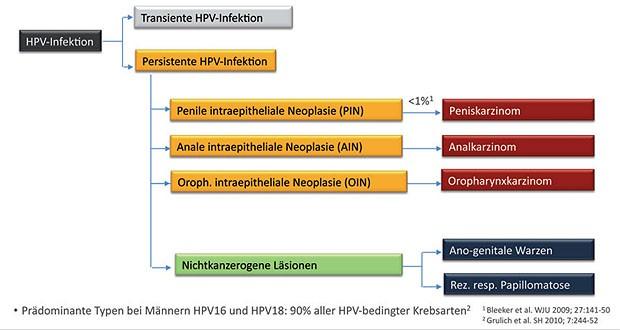 hpv impfung leitlinien légzési papillomatosis tudományos cikkek