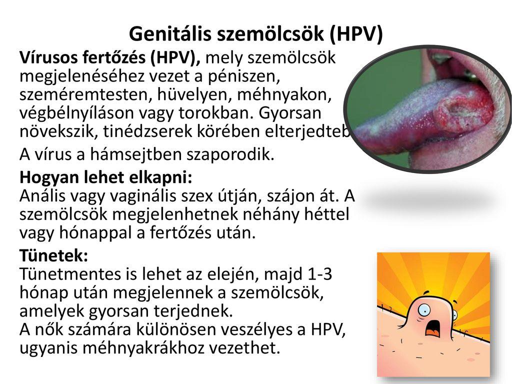 ha a genitális szemölcsök átterjednek különbség az emberi papillomavírus és a rák között