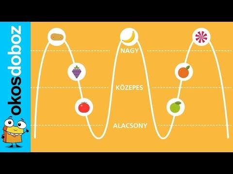 milyen gyorsak a féreggyógyszerek kerek férgek mozognak